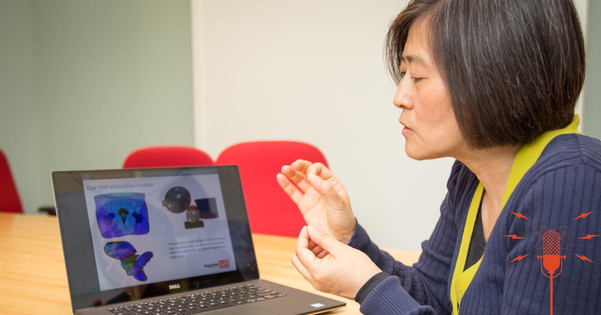 Assistant Professor Yue Zhang shows a 3d model on a laptop screen